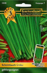 Schnittlauch Polyvit Schnittlauch Samen gefriergeeignet Gartenland Aschersleben