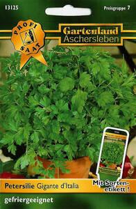 Petersilie Gigante d´Italia - Kräuter Samen - gefriergeeignet Gartenland Aschersleben