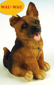 Schäferhund klein, Hund als Bewegungsmelder, be...