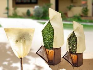 Kübelpflanzen Sack, Gr. S, 80 x 60 cm, 50 g/m²