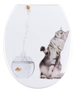 WC Sitz Jump - Katze vor Goldfischglas Wenko