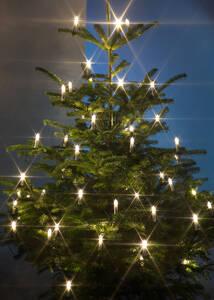 Kerzenlichterkette mit 50 warmweißen LEDs für den Innen- und Außenbereich Preisvergleich