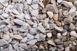 Zierkies Begakies, verschiedene Größen Preisvergleich