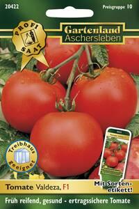 Tomate Valdeza, Gemüse Samen - Treibhaus geeignete F1 Hybride Gartenland Aschersleben