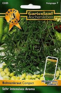 Bohnenkraut Compact - Kräuter Samen