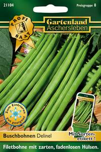 Buschbohnen Delinel, Gemüse Samen - Filetbohne Gartenland Aschersleben
