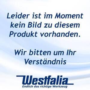 Ersatzgaskartusche für Bioflamme,600 ml Westfalia