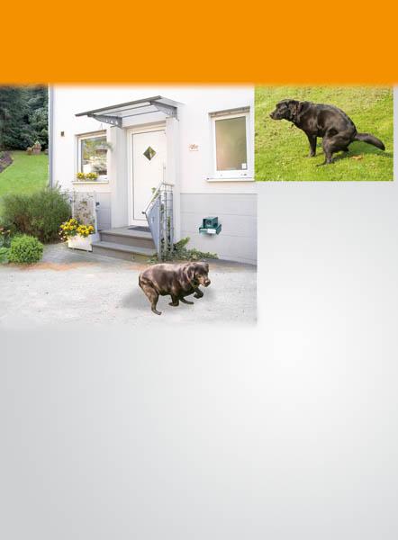 katzen und hundeschreck mit ziellaser ultraschall. Black Bedroom Furniture Sets. Home Design Ideas