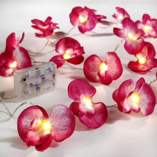 Led Beleuchtung Orchideen : LED Lichterkette ORCHIDEEN, 240 cm, 20 Bl?ten