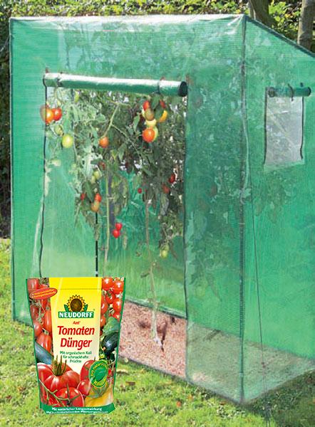Greenhouse tomaten Great 190 x 170 x 80 cm incl tomaten kunstmest